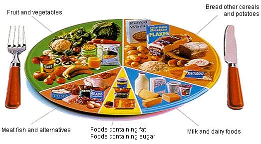 Best Quality Balanced Diet Food Chart 523 x 289 · 53 kB · jpeg