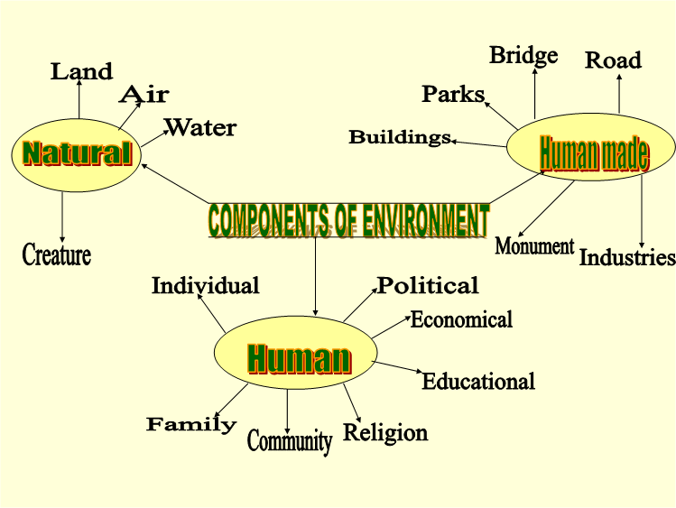 Components of Environment.png